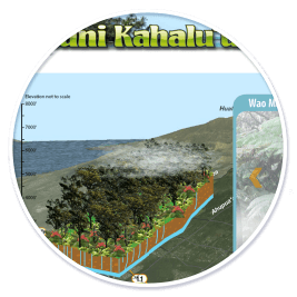 Waipuni Kahalu'u Watershed Website